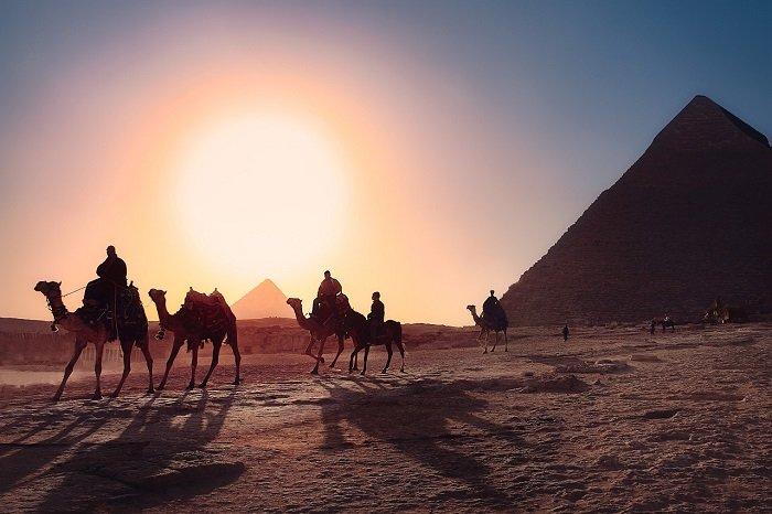 Караван верблюдов на фоне пирамид